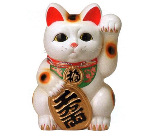 白小判猫(左手)